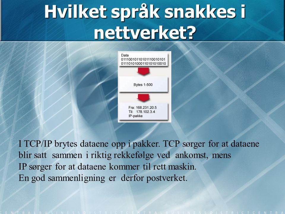 Hvilket språk snakkes i nettverket