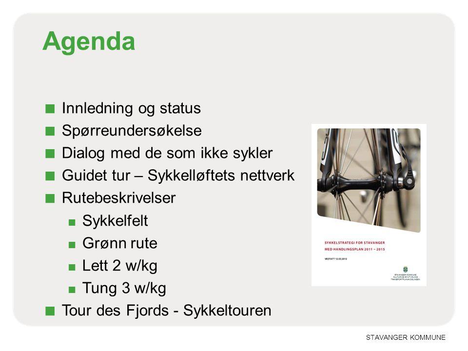 Agenda Innledning og status Spørreundersøkelse