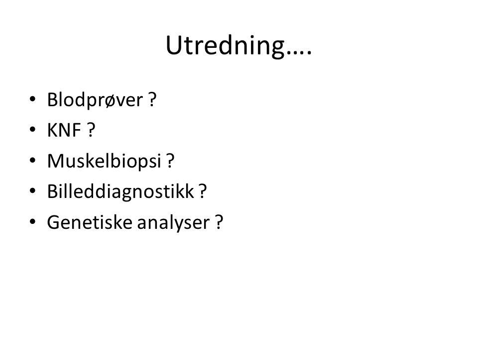 Utredning…. Blodprøver KNF Muskelbiopsi Billeddiagnostikk