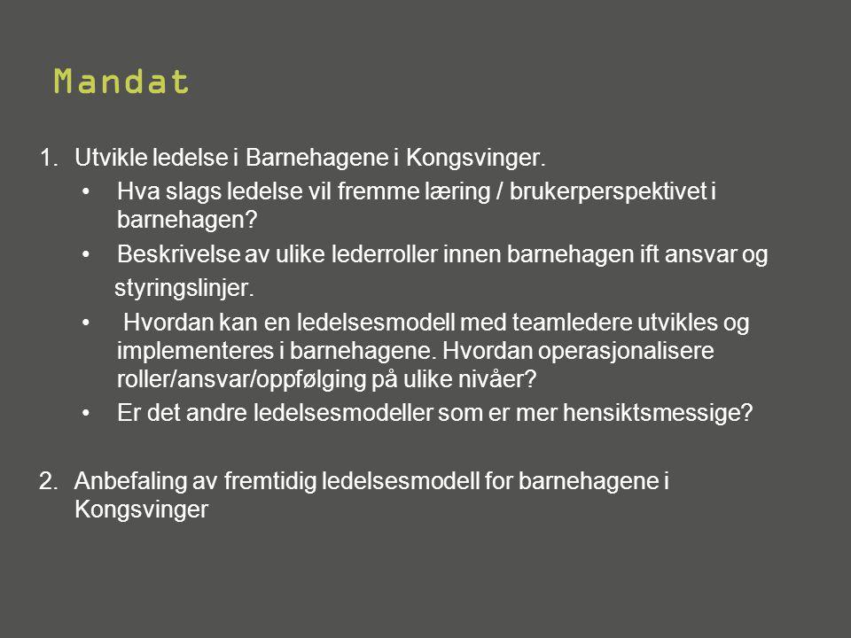 Mandat Utvikle ledelse i Barnehagene i Kongsvinger.