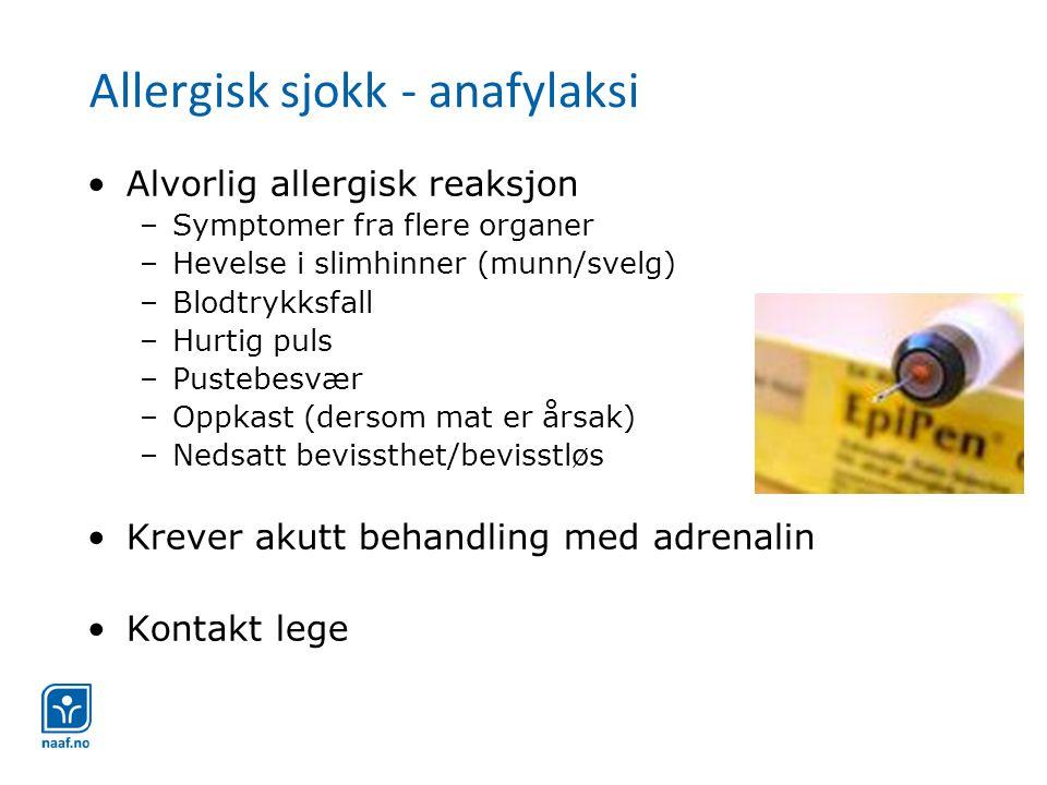 Allergisk sjokk - anafylaksi