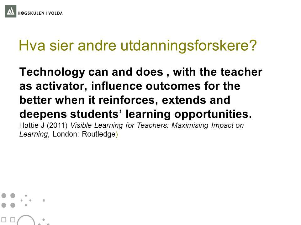 Hva sier andre utdanningsforskere
