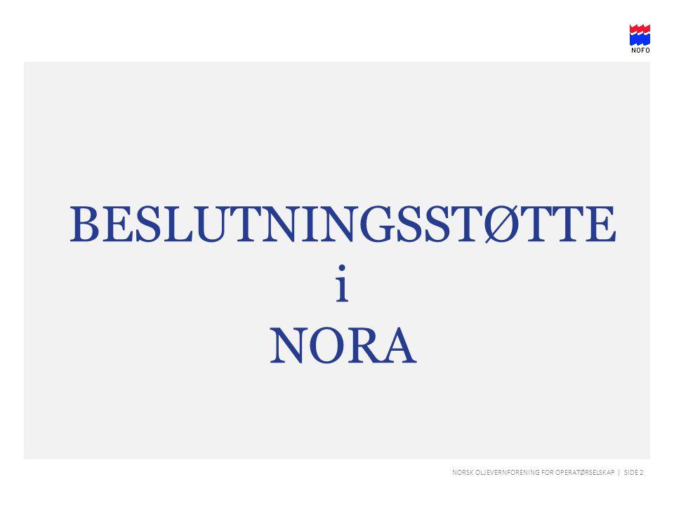 BESLUTNINGSSTØTTE i NORA