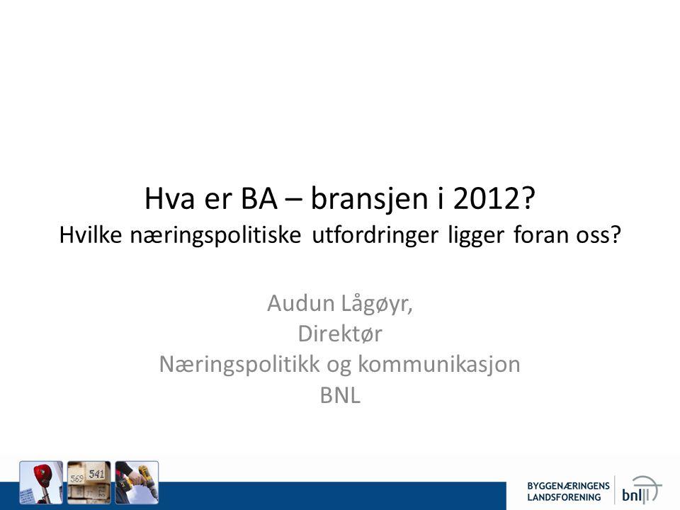 Audun Lågøyr, Direktør Næringspolitikk og kommunikasjon BNL