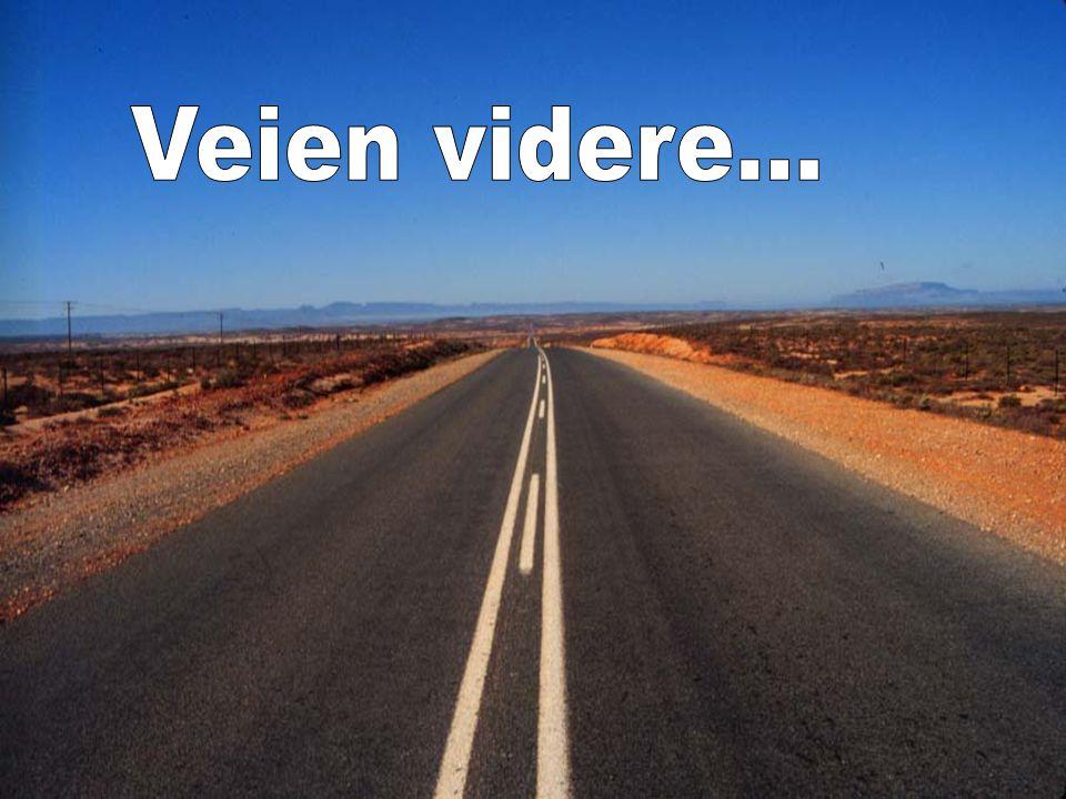 Veien videre...