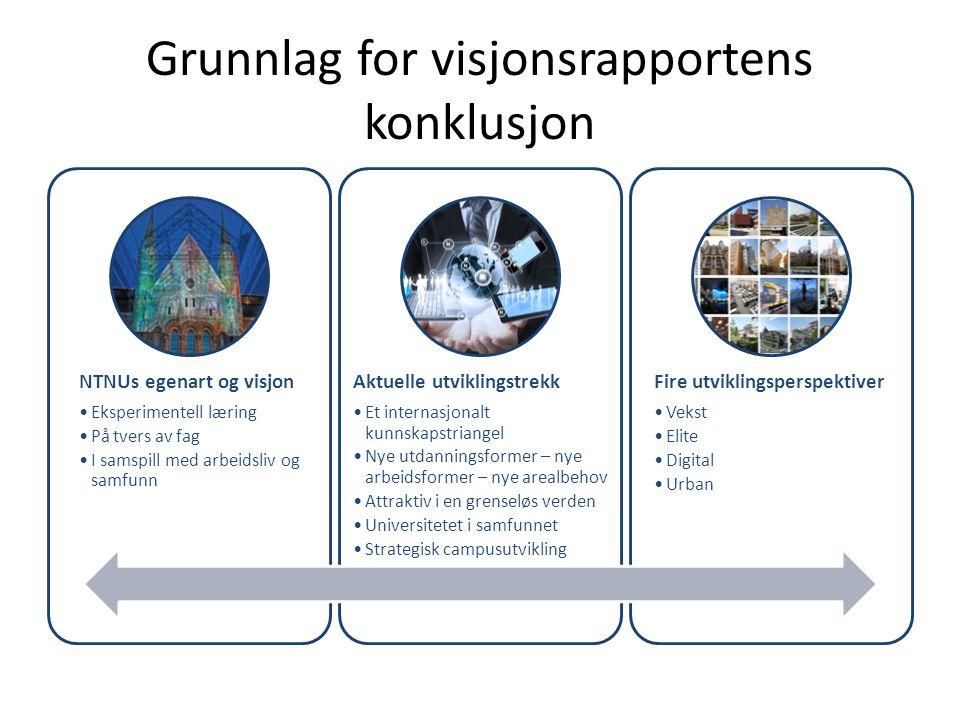 Grunnlag for visjonsrapportens konklusjon