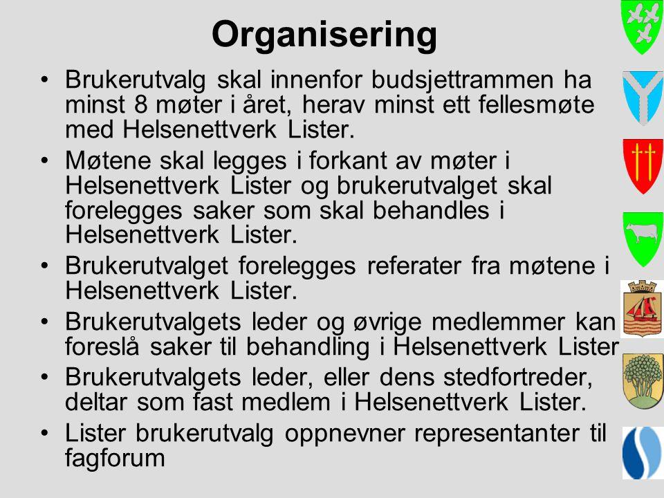 Organisering Brukerutvalg skal innenfor budsjettrammen ha minst 8 møter i året, herav minst ett fellesmøte med Helsenettverk Lister.