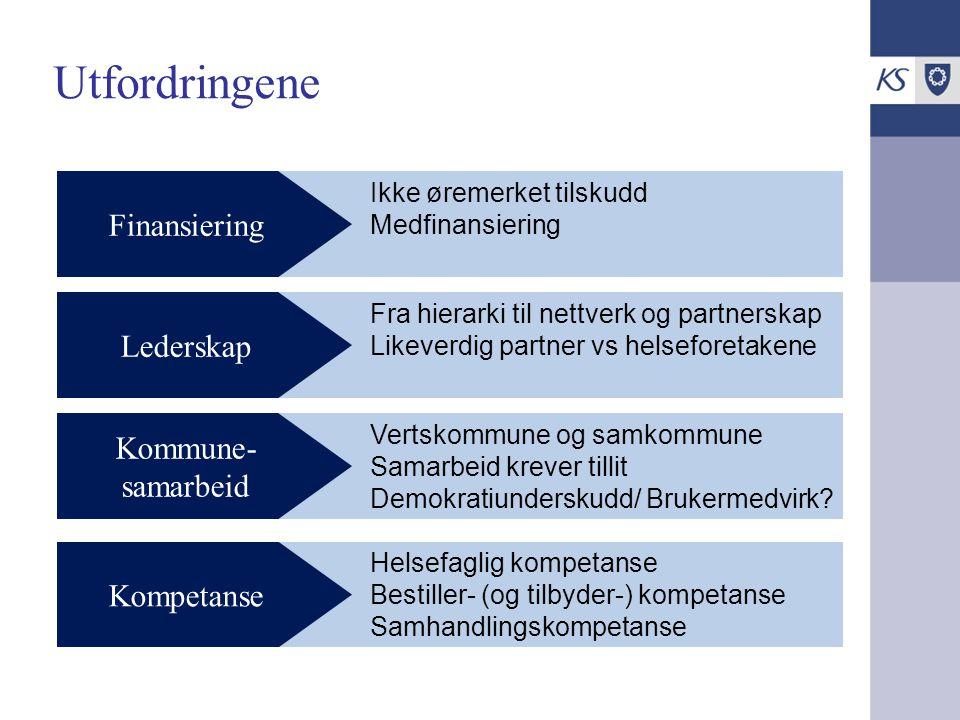 Utfordringene Finansiering Lederskap Kommune- samarbeid Kompetanse