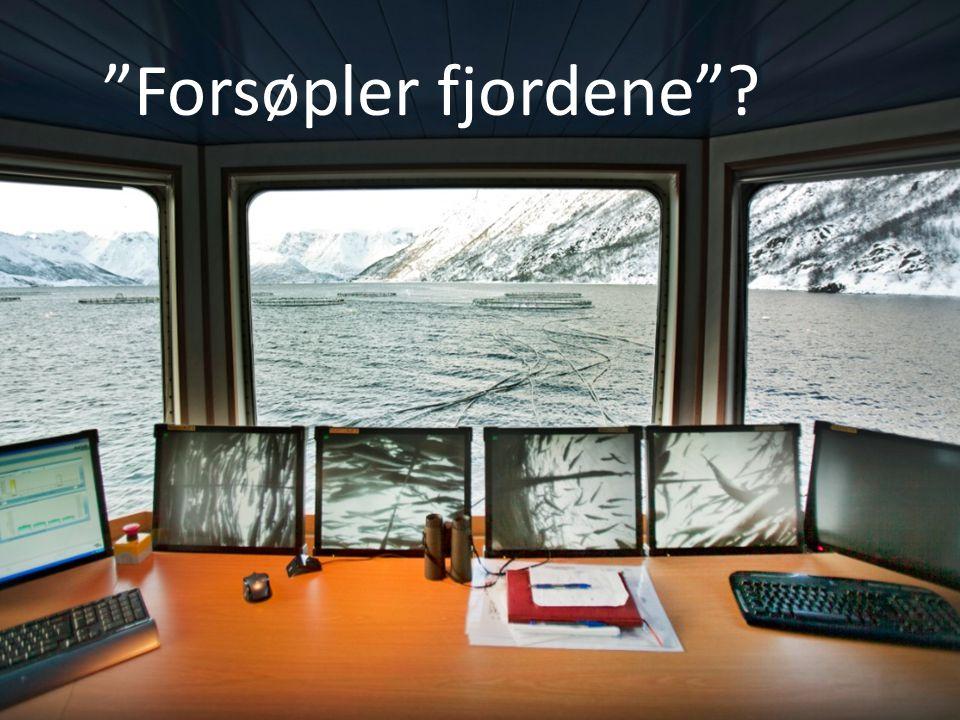 Forsøpler fjordene .
