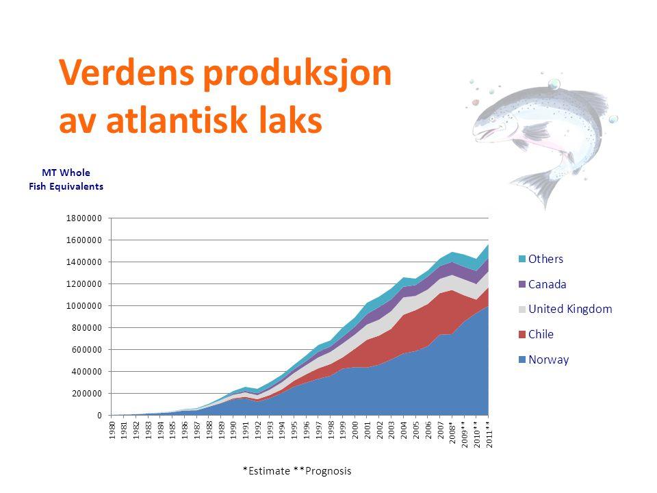 Verdens produksjon av atlantisk laks
