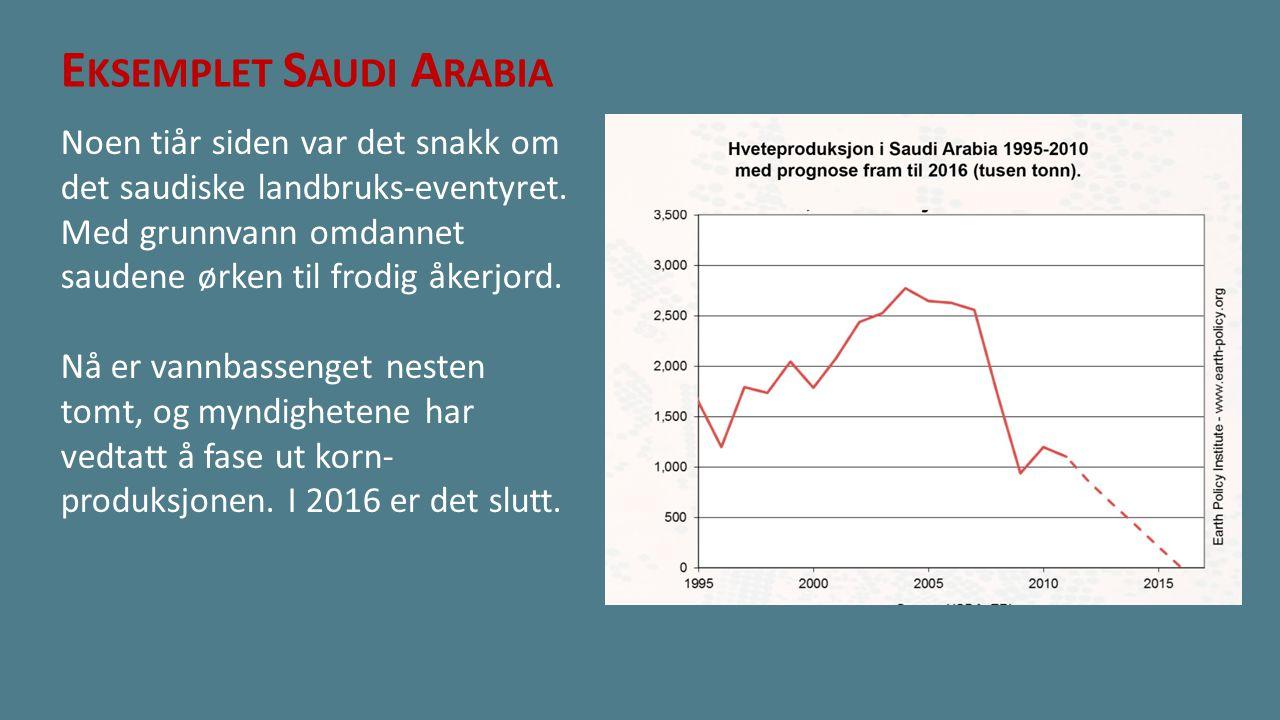 Eksemplet Saudi Arabia