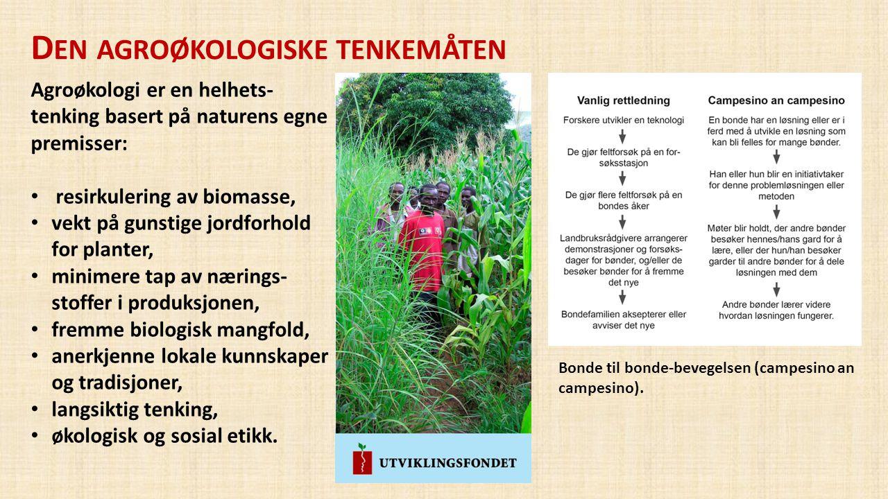 Den agroøkologiske tenkemåten
