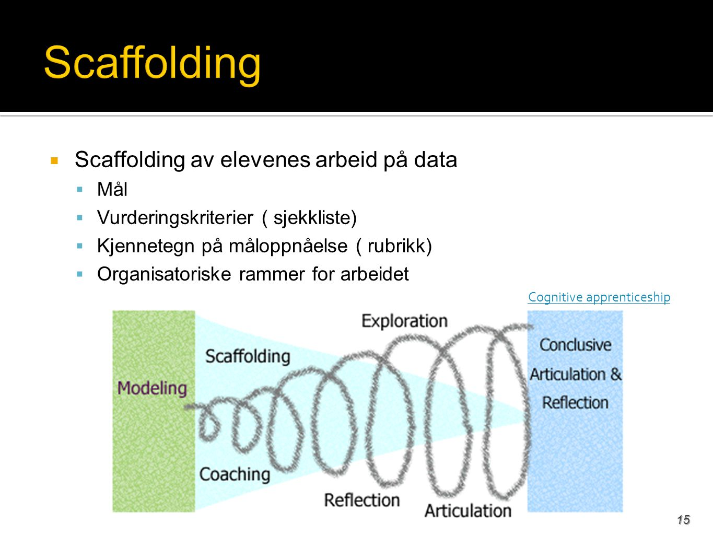 Scaffolding Scaffolding av elevenes arbeid på data Mål