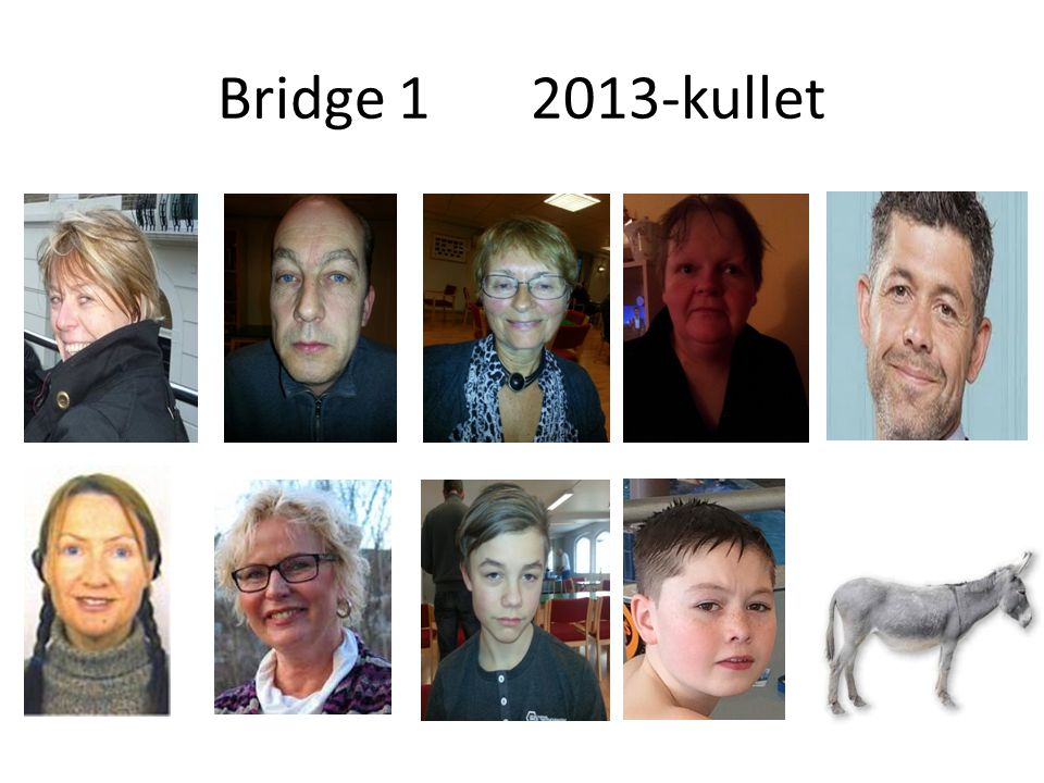 Bridge 1 2013-kullet