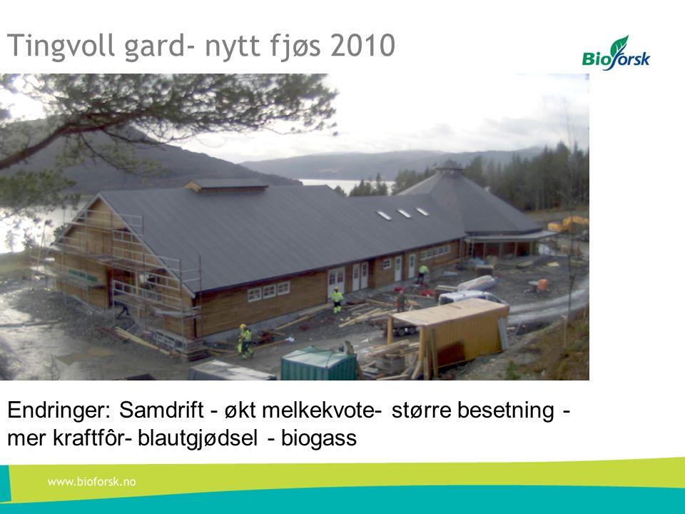 Tingvoll gard- nytt fjøs 2010