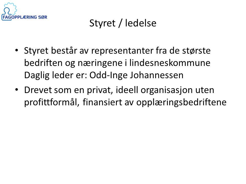 Styret / ledelse Styret består av representanter fra de største bedriften og næringene i lindesneskommune Daglig leder er: Odd-Inge Johannessen.