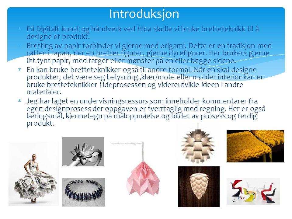 Introduksjon På Digitalt kunst og håndverk ved Hioa skulle vi bruke bretteteknikk til å designe et produkt.