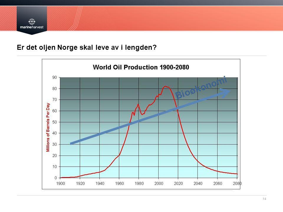Er det oljen Norge skal leve av i lengden