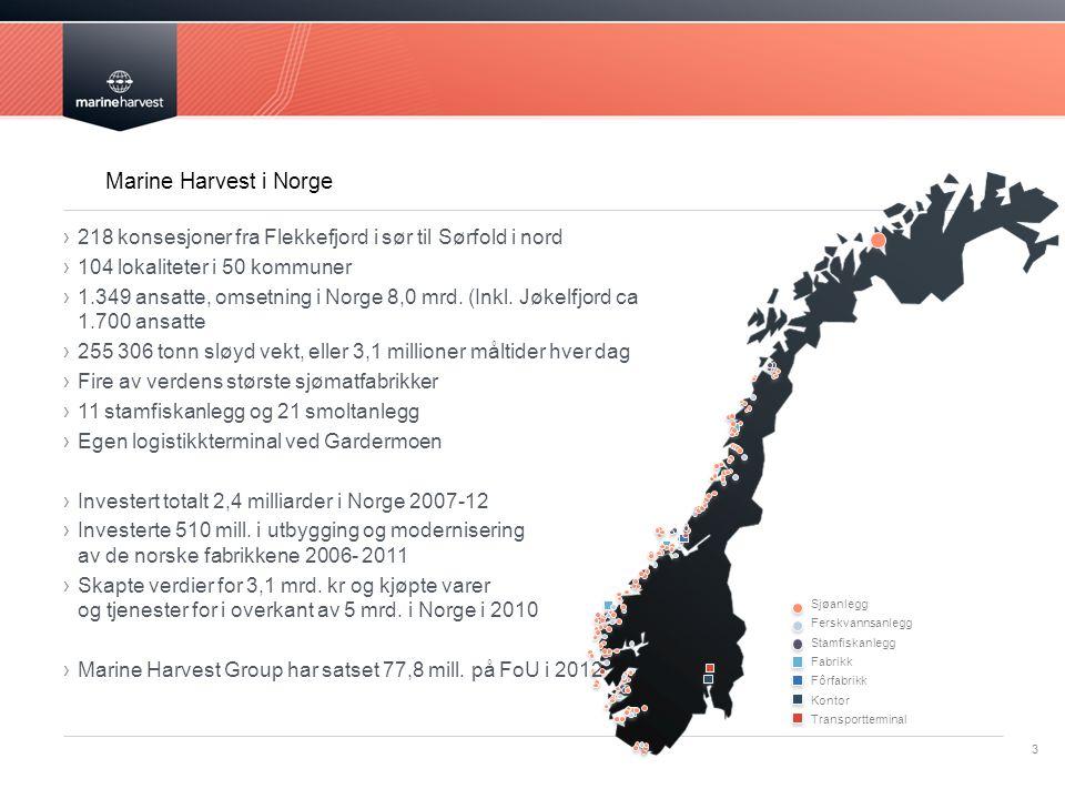 Marine Harvest i Norge 218 konsesjoner fra Flekkefjord i sør til Sørfold i nord. 104 lokaliteter i 50 kommuner.