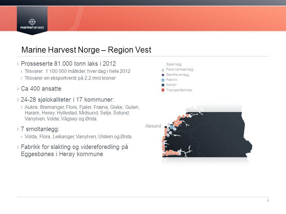 Marine Harvest Norge – Region Vest