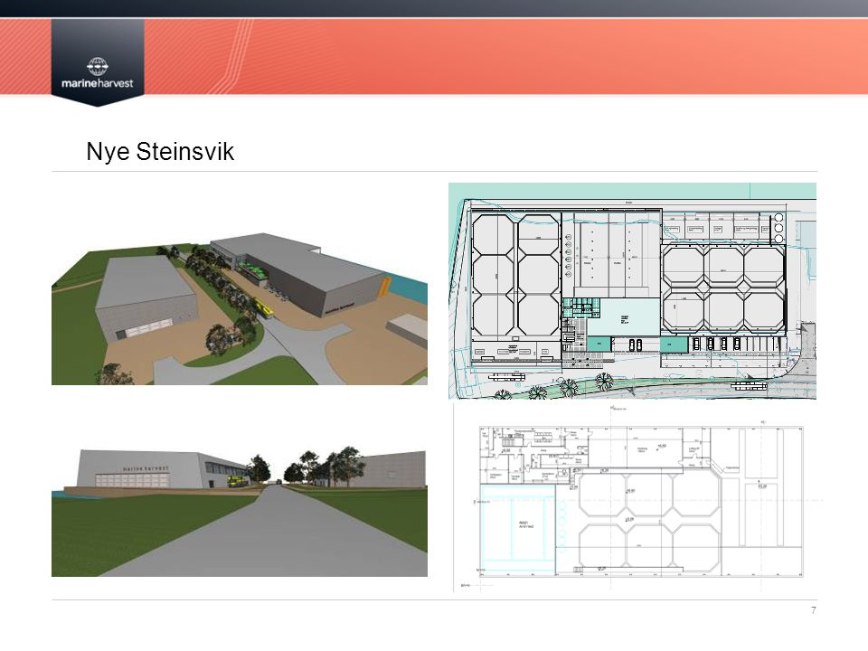 Nye Steinsvik