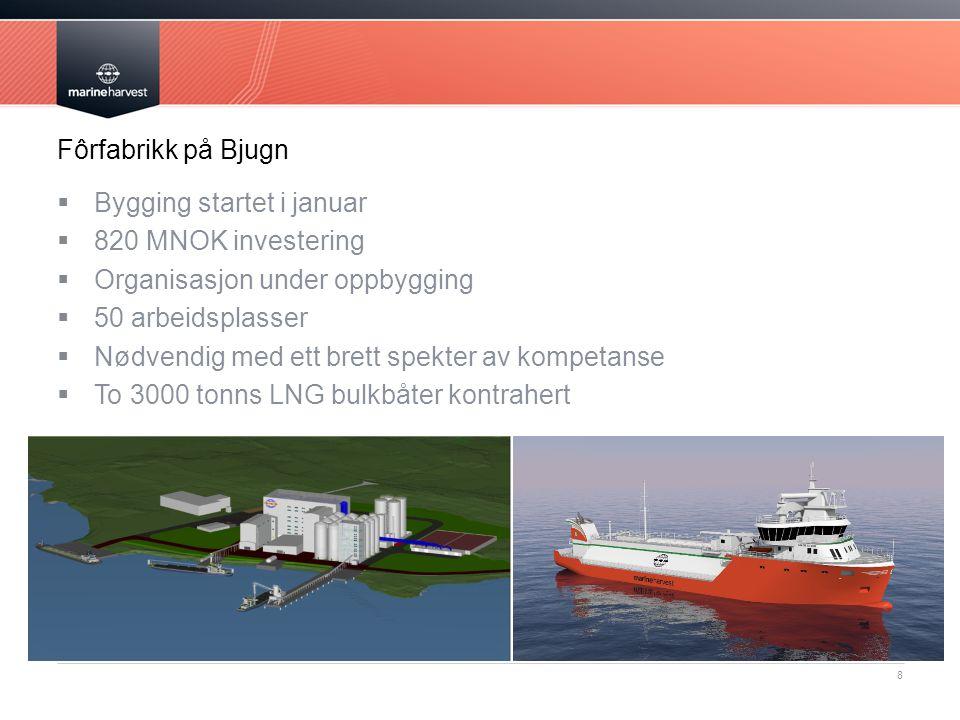 Fôrfabrikk på Bjugn Bygging startet i januar. 820 MNOK investering. Organisasjon under oppbygging.
