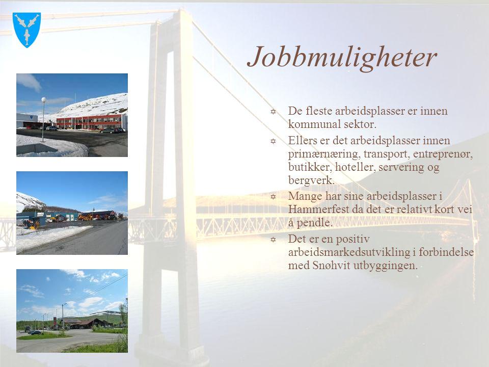 Jobbmuligheter De fleste arbeidsplasser er innen kommunal sektor.