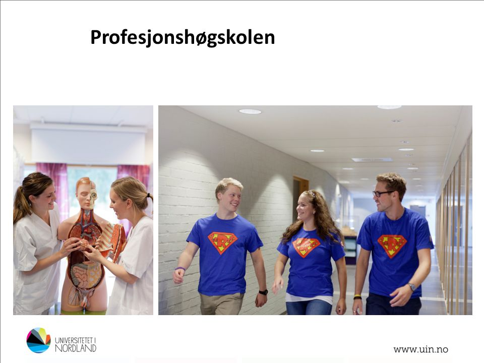 Profesjonshøgskolen Bachelor -faglærer i kroppsøving og idrettsfag