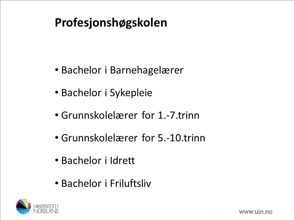 Profesjonshøgskolen Bachelor i Barnehagelærer Bachelor i Sykepleie