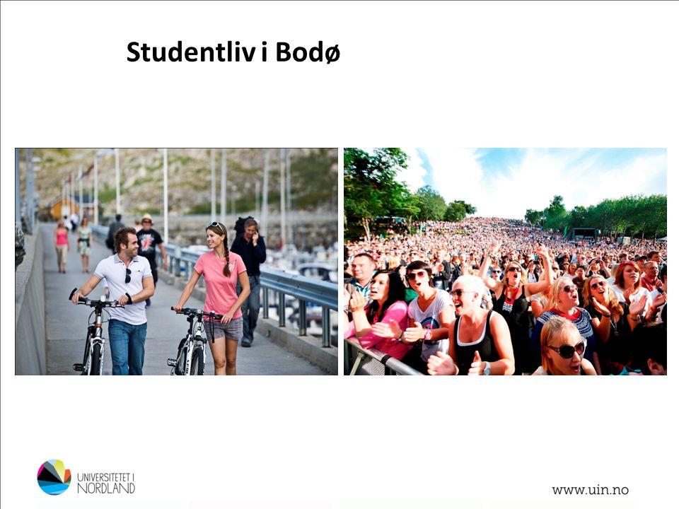 Studentliv i Bodø Aktivt kulturliv konserter, kino, klubber