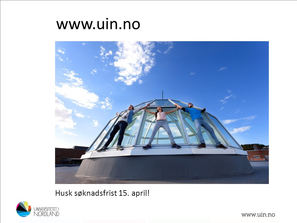 www.uin.no Husk søknadsfrist 15. april! Foto: Lillian Jonassen