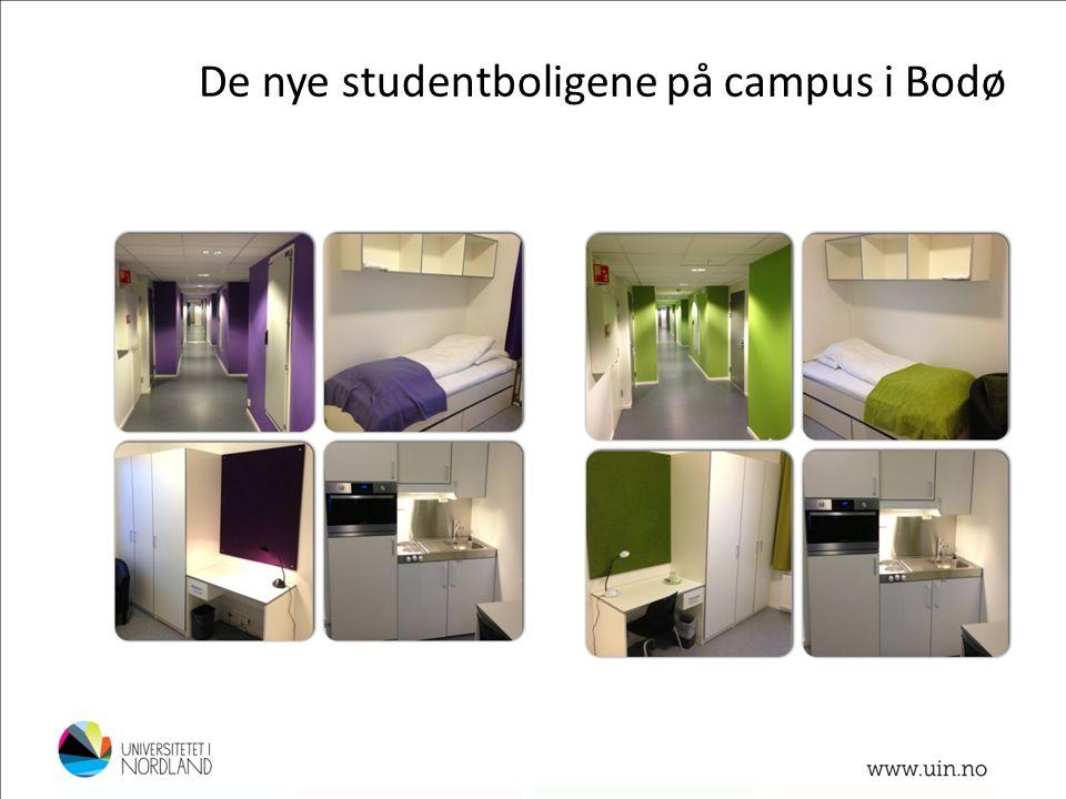 De nye studentboligene på campus i Bodø