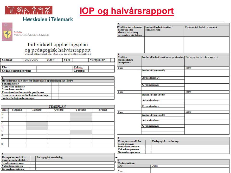 IOP og halvårsrapport Inge Jørgensen 05-06.09.08