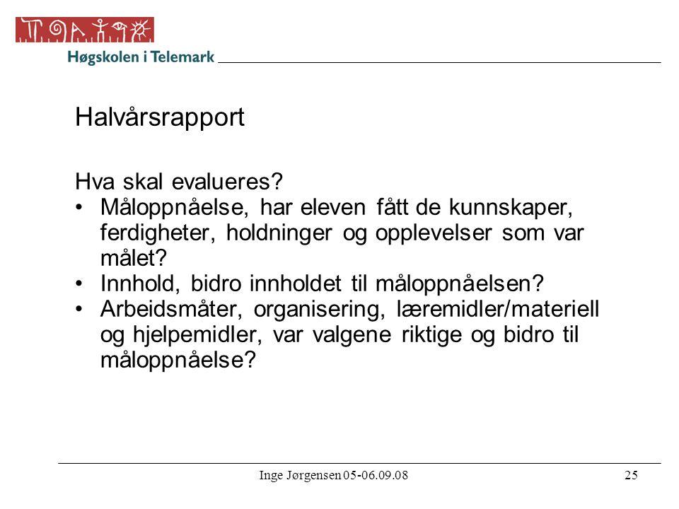 Halvårsrapport Hva skal evalueres