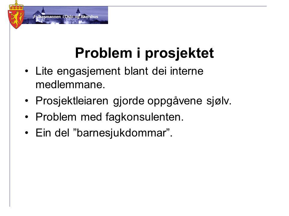 Problem i prosjektet Lite engasjement blant dei interne medlemmane.