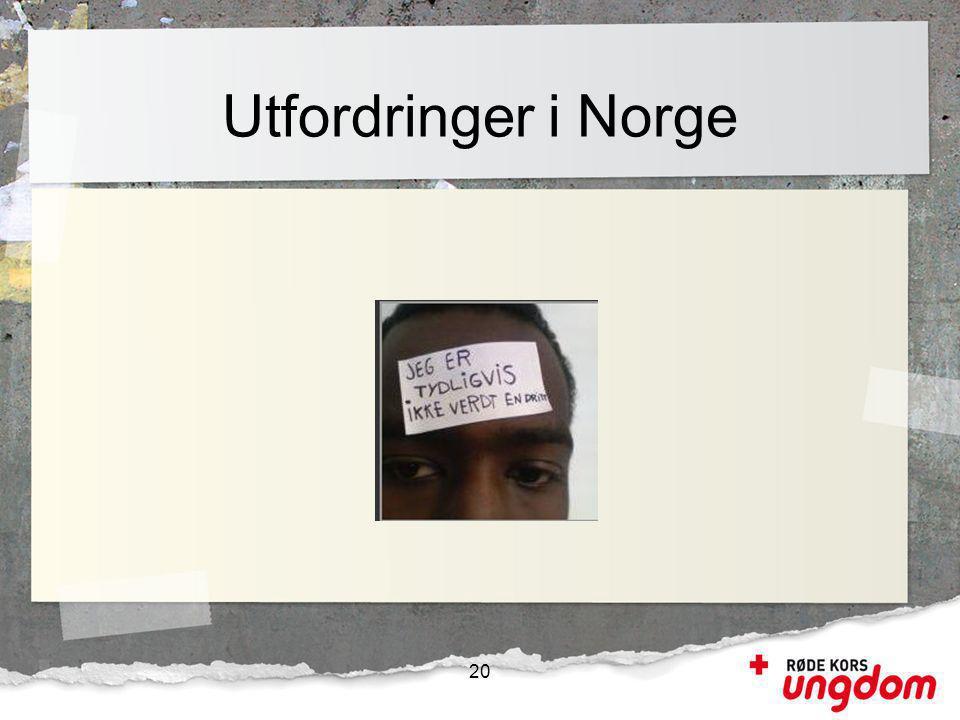 Utfordringer i Norge 20 10 humanitære utfordringer nasjonalt: