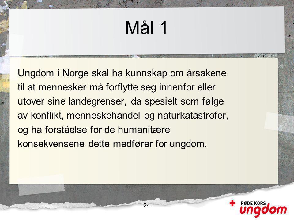 Mål 1 Ungdom i Norge skal ha kunnskap om årsakene