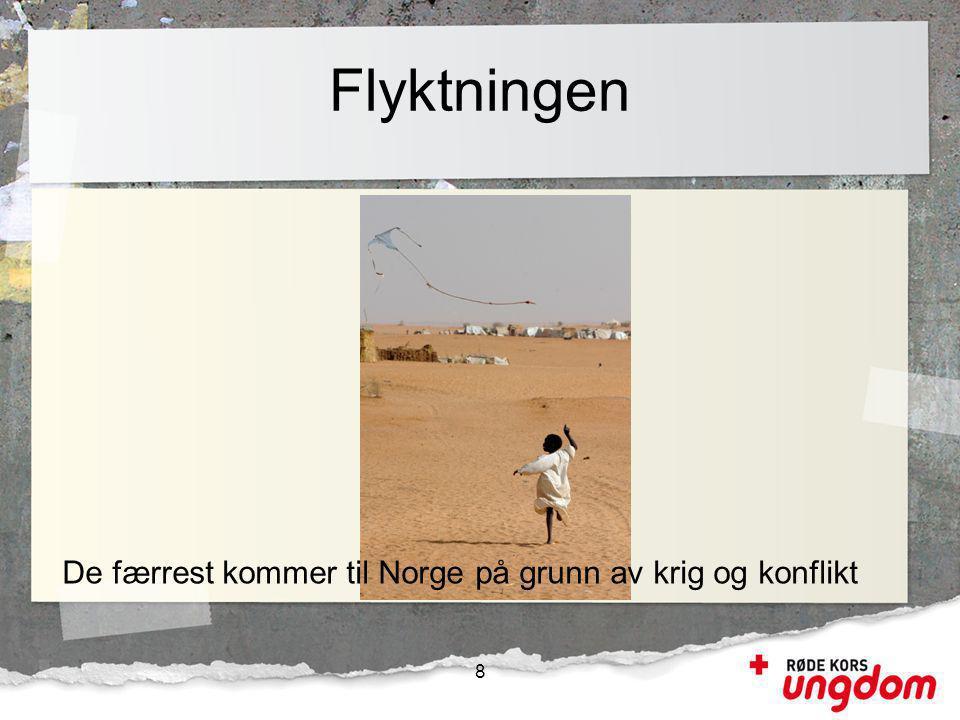 Flyktningen De færrest kommer til Norge på grunn av krig og konflikt 8