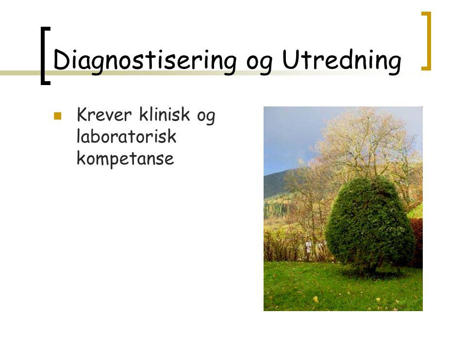 Diagnostisering og Utredning