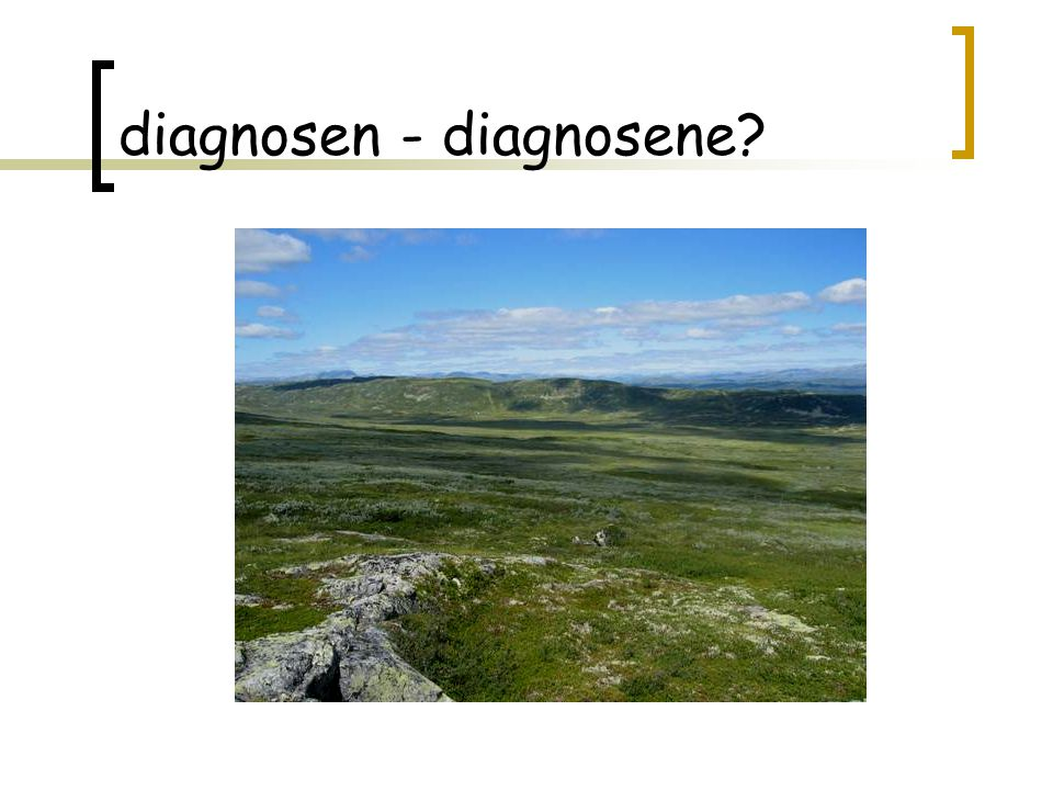 diagnosen - diagnosene