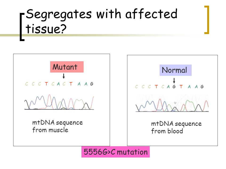 Segregates with affected tissue