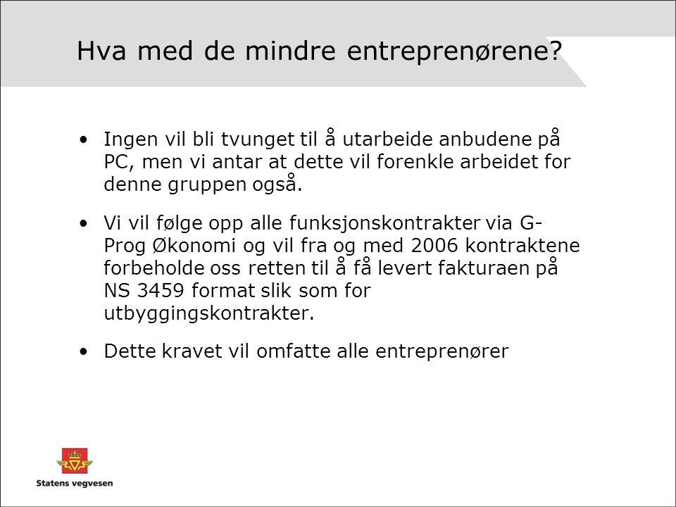Hva med de mindre entreprenørene