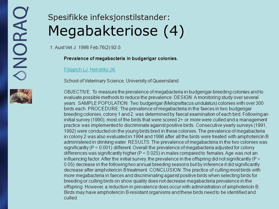 Spesifikke infeksjonstilstander: Megabakteriose (4)