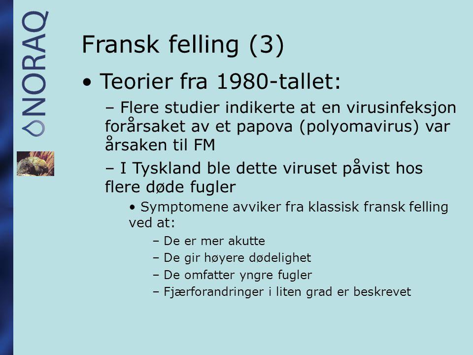 Fransk felling (3) Teorier fra 1980-tallet: