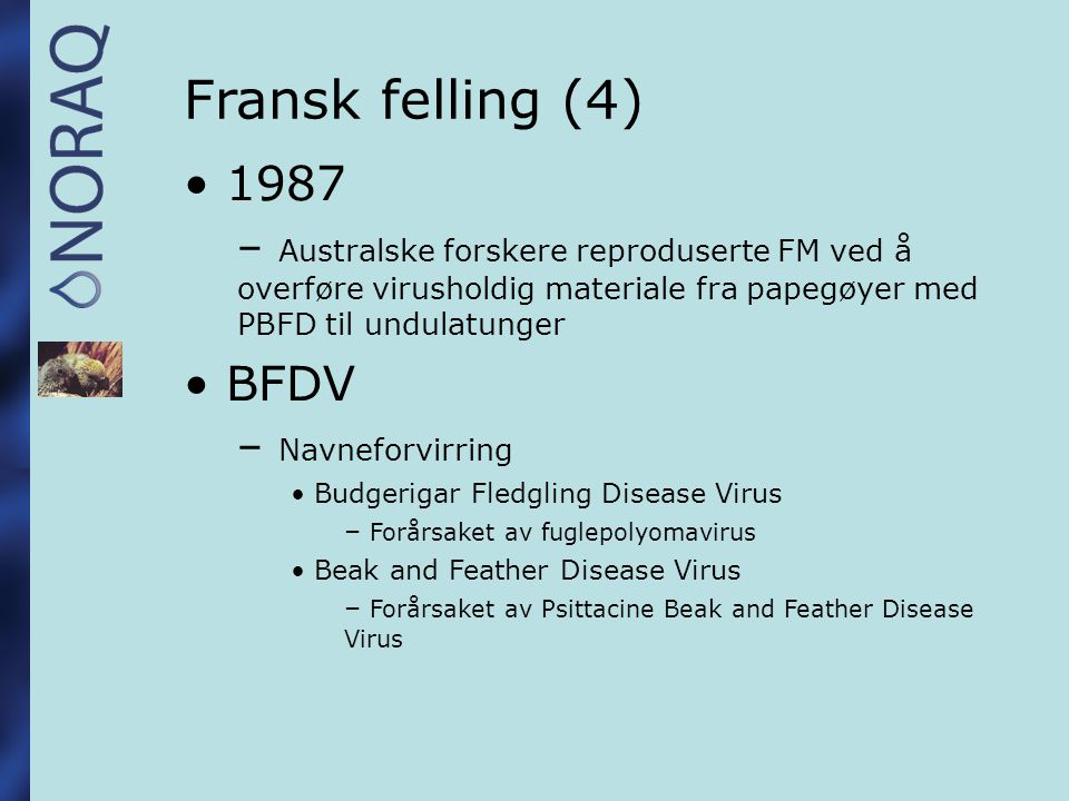 Fransk felling (4) 1987. Australske forskere reproduserte FM ved å overføre virusholdig materiale fra papegøyer med PBFD til undulatunger.