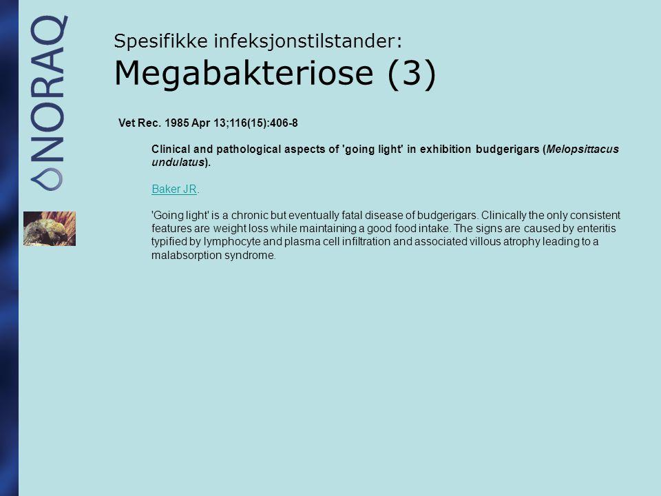 Spesifikke infeksjonstilstander: Megabakteriose (3)