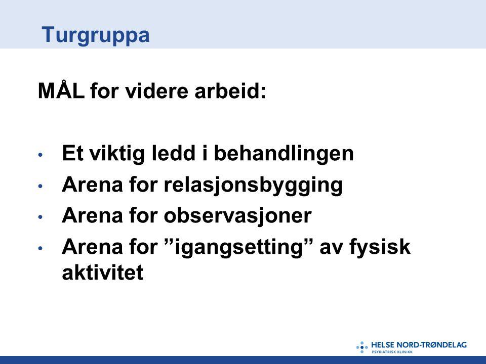 Turgruppa MÅL for videre arbeid: Et viktig ledd i behandlingen. Arena for relasjonsbygging. Arena for observasjoner.