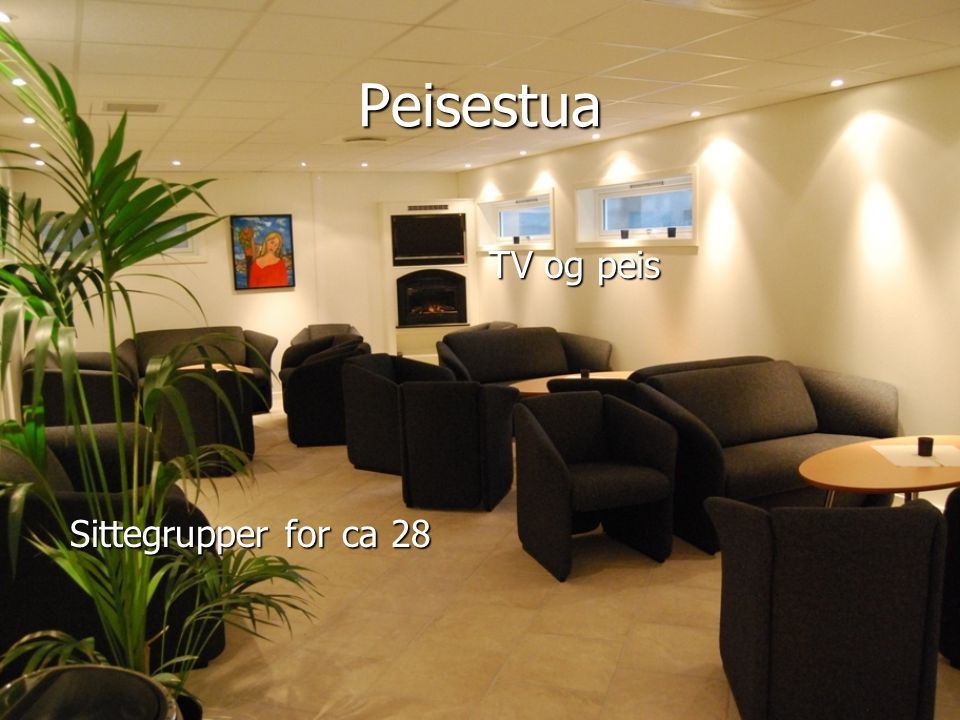 Peisestua TV og peis Sittegrupper for ca 28