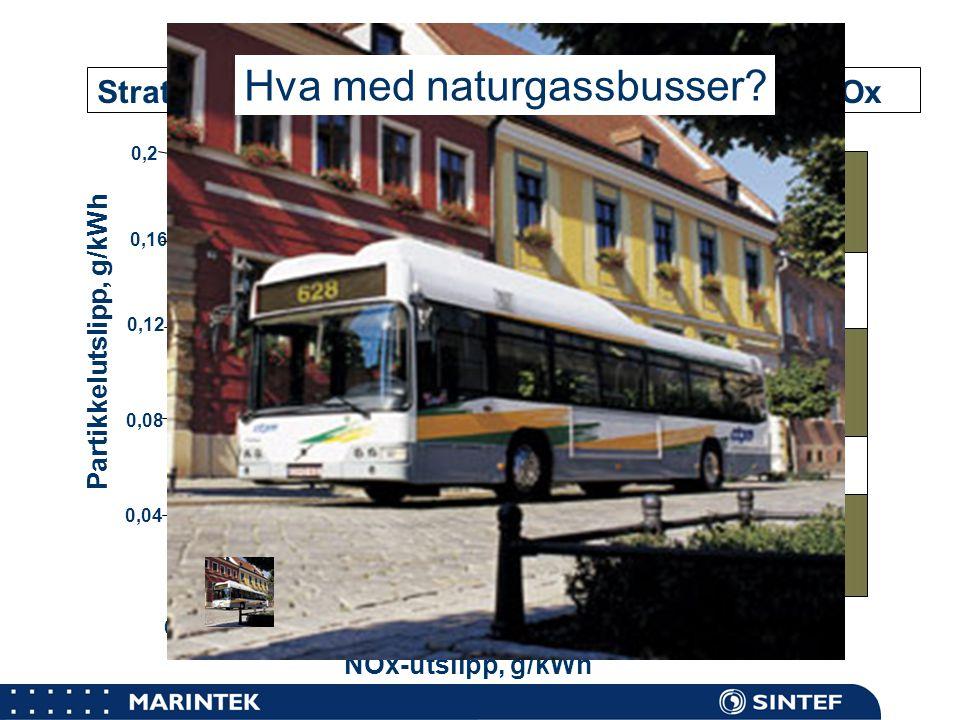 Hva med naturgassbusser