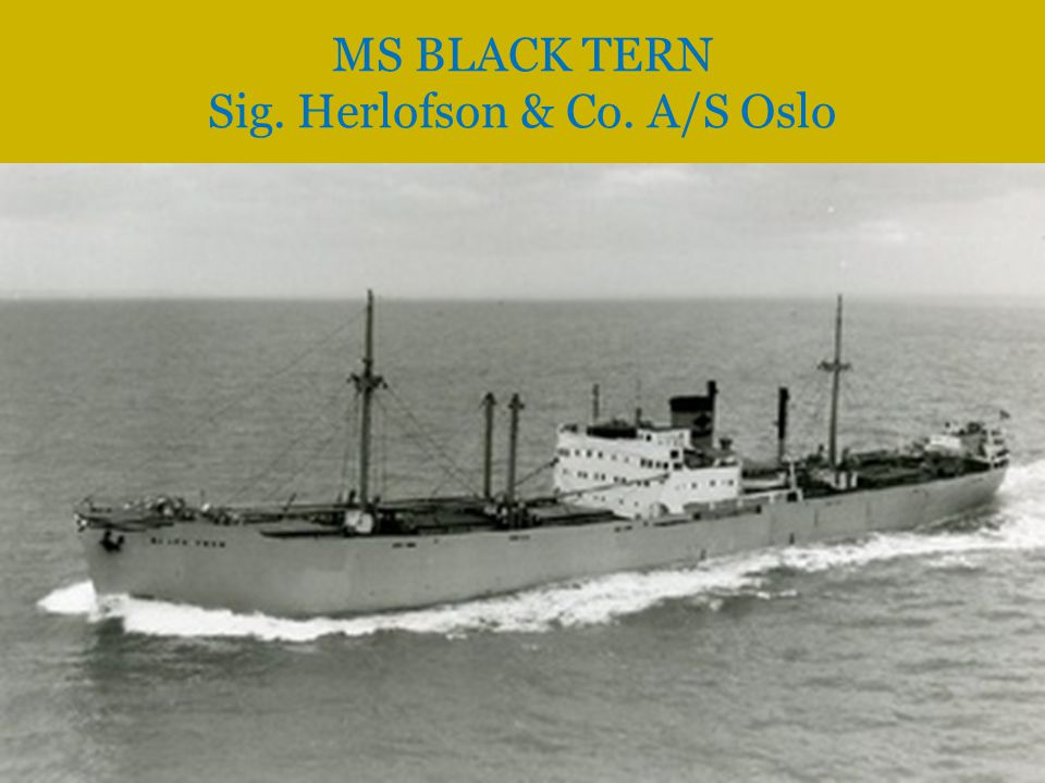 MS BLACK TERN Sig. Herlofson & Co. A/S Oslo